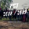 Freiwilliges Soziales Jahr (FSJ) ind er Jugend(verbands)arbeit